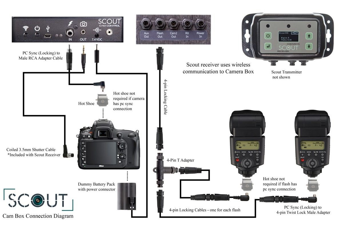 Wiring for Scout Camera Box to Multiple Flashes