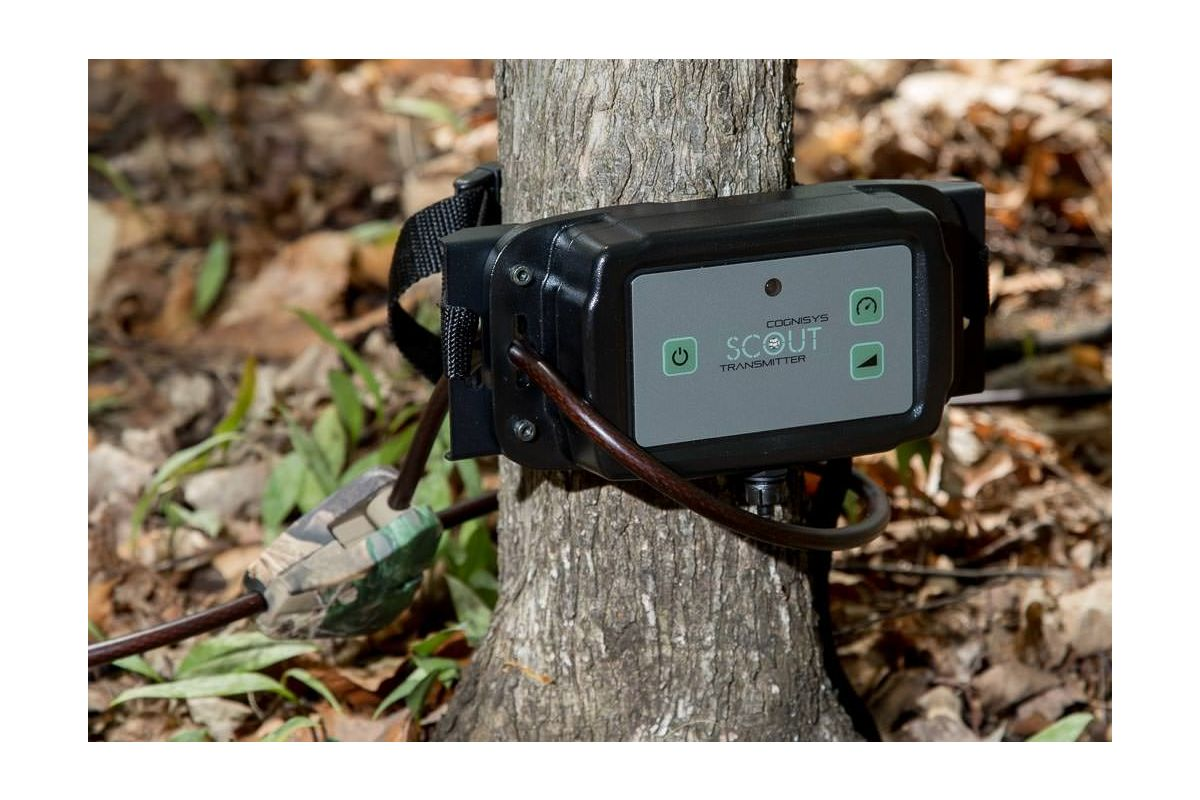 Scout Tree Bracket in use. Tree, Scout TX and Locking cable not included.