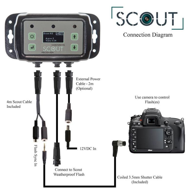 Scout Connection Diagram with Flash Sync
