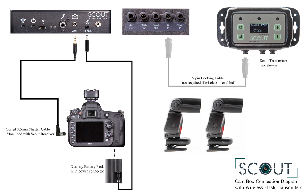 Connecting the Scout Camera Box with wireless flash transmitters