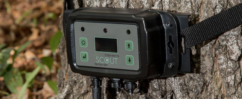 Scout - Camera Trapping System